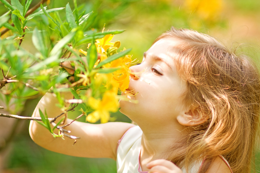 Little girl smells flower