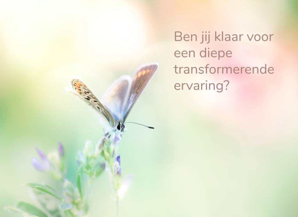 transformatie reiki 2