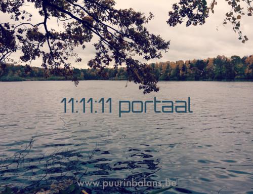 Het 11:11:11 portaal –  verhoog je bewustzijn