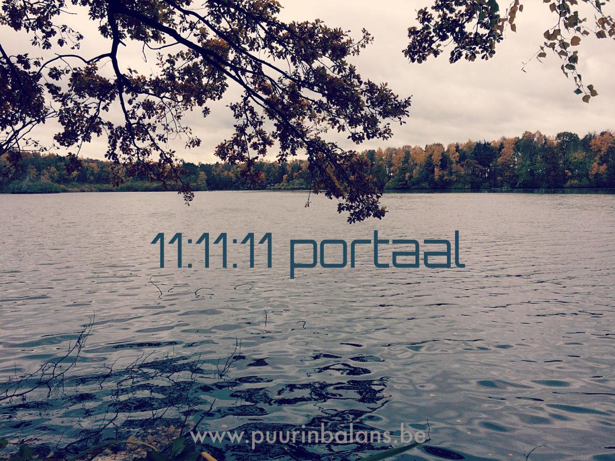 11:11:11 portaal
